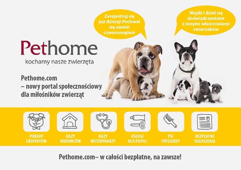Pethome.com to pierwszy w polsce portal społecznościowy dla zwierząt /materiały prasowe