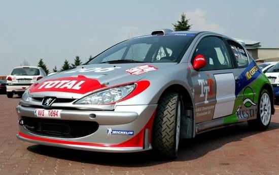 Peugeot 206 Super 1600 /INTERIA.PL