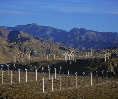 PGE chce zbudować trzy farmy wiatrowe
