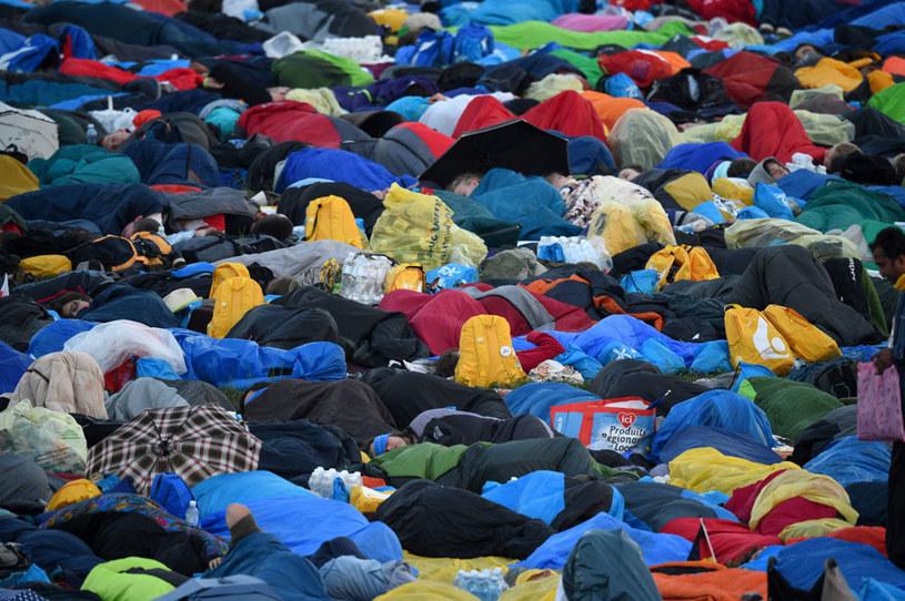 Pielgrzymi śpią na Campusie Misericordiae w Brzegach /Jacek Turczyk /PAP