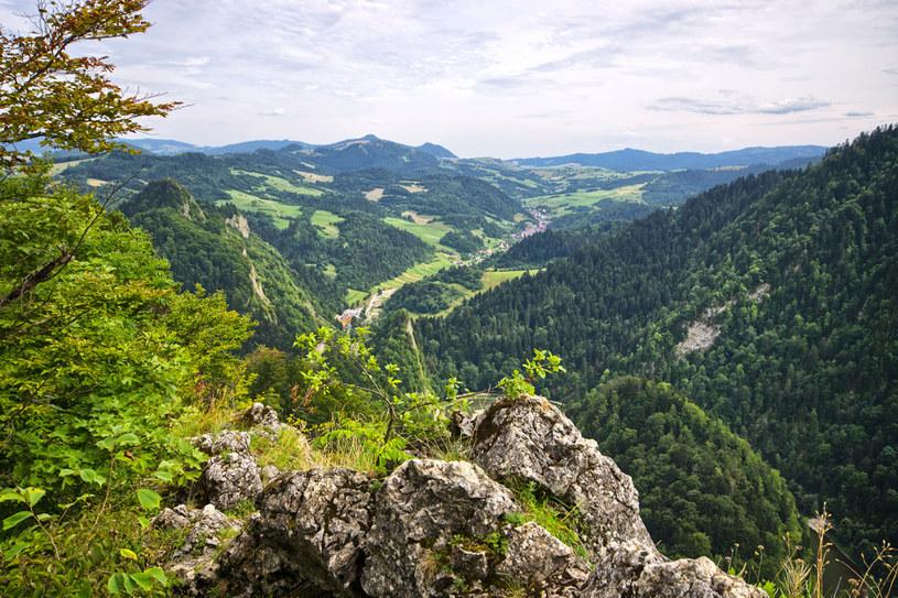 Pieniny - widok ze szczytu Sokolicy /123RF/PICSEL