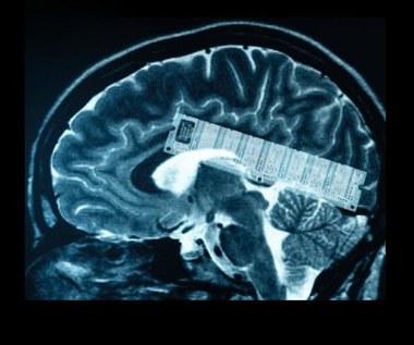 Pierwsza pamięć wymienna do mózgu