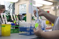 Pierwsze badania antydopingowe piłkarzy przed Euro 2012. Są czyści