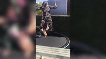 Pierwszy raz na trampolinie. Skończyła w żywopłocie