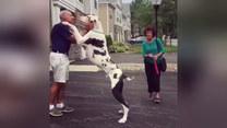 Pies chciał mu dać całusa. Finał?