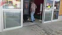 Pies na zakupach. Sam za wszystko zapłacił