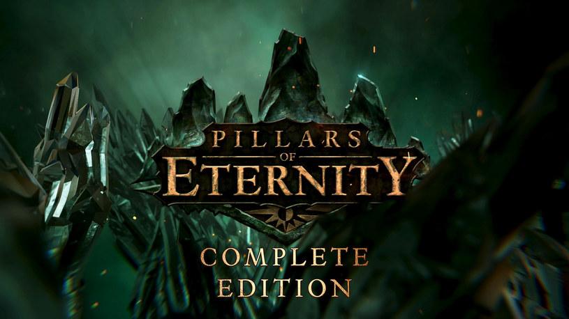 Pillars of Eternity /materiały prasowe
