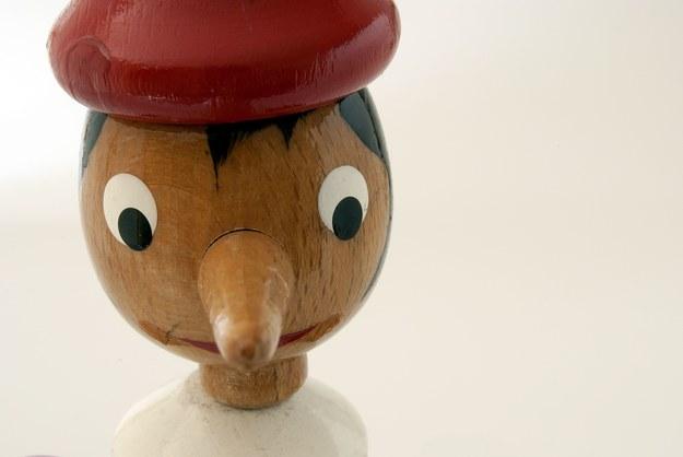 Pinokio - to najbardziej znana powieść Carlo Collodiego /123/RF PICSEL