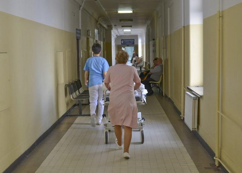 PiS: Zaczyna się sprzedaż szpitali za bezcen /Włodzimierz Wasyluk /Reporter