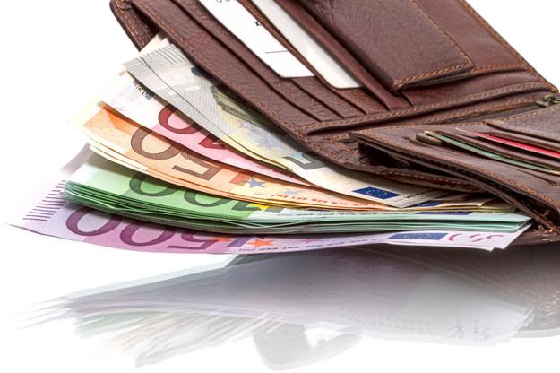 Płaca minimalna w Niemczech oznacza dla polskich kierowców 12-14 euro za godzinę /123RF/PICSEL