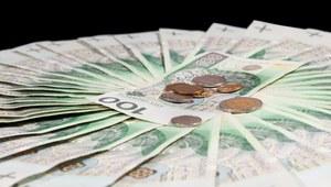 Płaca minimalna w Polsce jest najwyższa w regionie /123RF/PICSEL