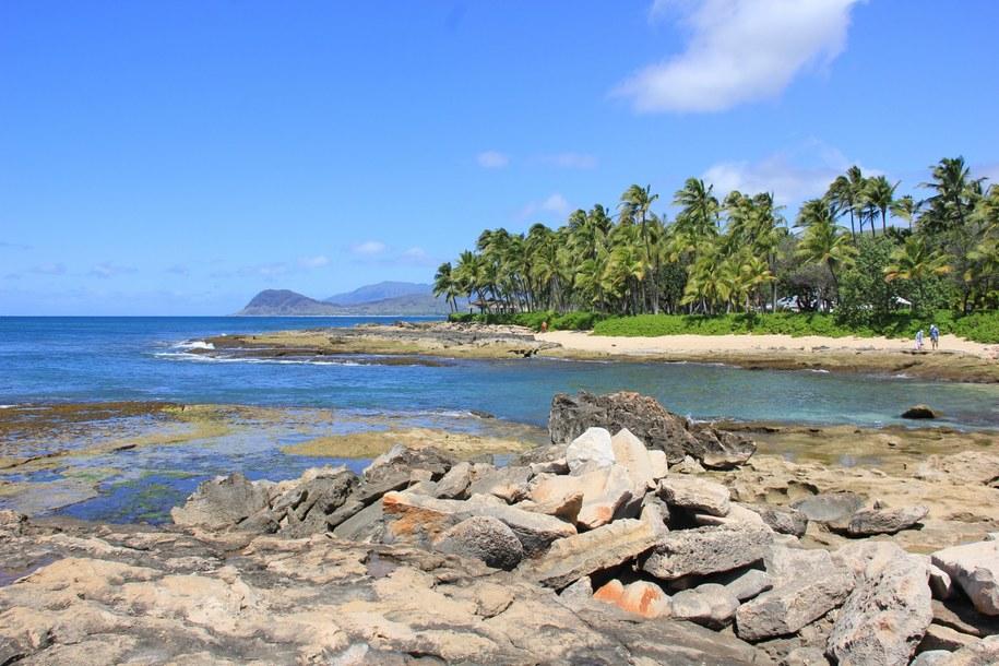 Plaża na Hawajach /Paweł Żuchowski /RMF FM