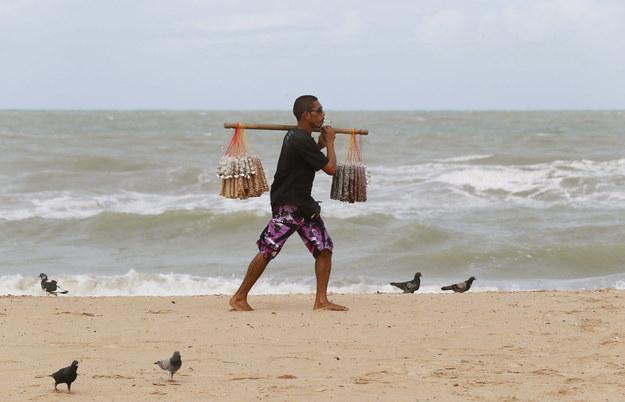 Plaża w Recife /YURI KOCHETKOV /PAP/EPA
