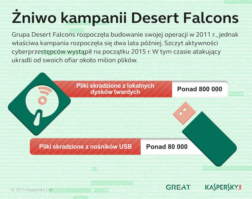 Pliki skradzione w wyniku działań grupy Desert Falcons. /materiały prasowe