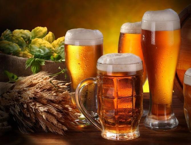 Plotki o sproszkowanej żółci w piwie są wyssane z palca /©123RF/PICSEL