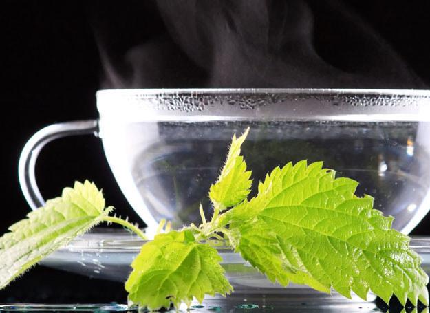 Płukanka pokrzywowa z chmielem wzmacnia cebulki włosowe /©123RF/PICSEL
