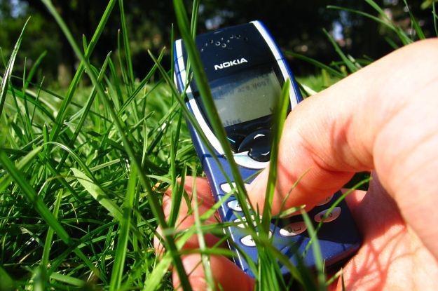 Plus chce postawić na nogi wasze telefony  fot. David Lok /stock.xchng