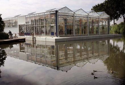 Pływająca szklarnia w Naaldwijk /AFP