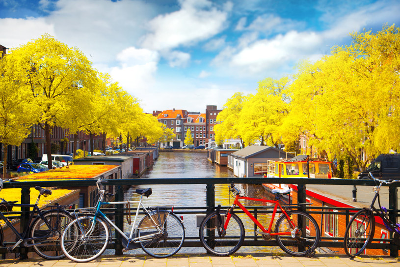 Po Amsterdamie najlepiej poruszać się na rowerze /123/RF PICSEL