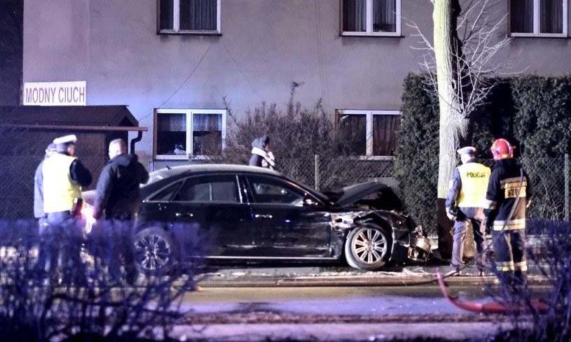 Po uderzeniu w Seicento Audi zatrzymało się na drzewie /Andrzej Grygiel /PAP