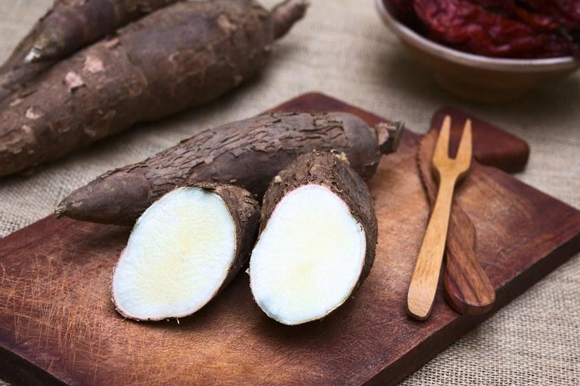 Po zmieleniu tej rośliny, manioku, uzyskuje się tapiokę, produkt skrobiowy, który usprawnia pracę jelit /123RF/PICSEL