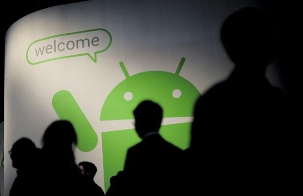 Pod koniec 2013 roku liczba urządzeń z systemem Android powinna wynosić miliard /AFP