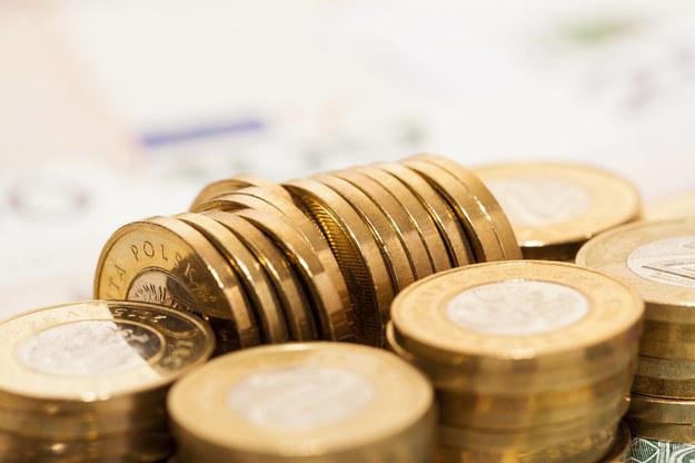 Podatki i składki pozbawiają nas lwiej części dochodów /123RF/PICSEL
