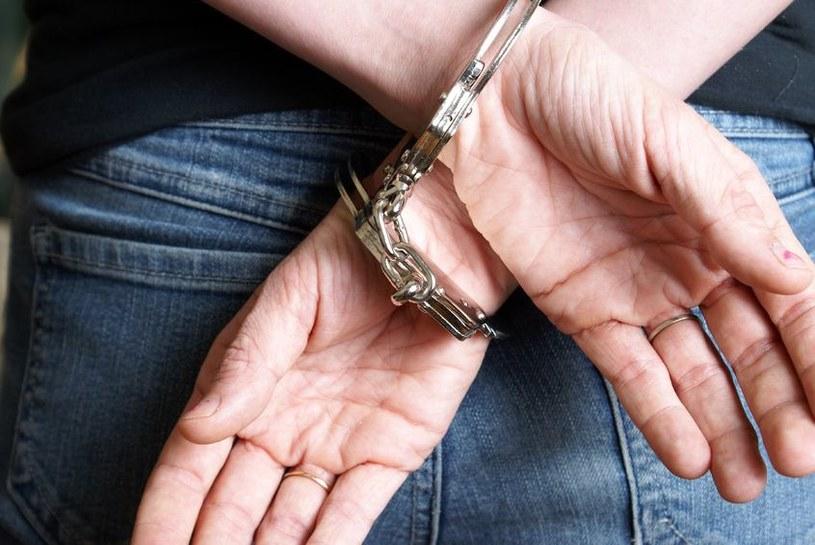 Podejrzanemu grozi kara do 12 lat pozbawienia wolności /©123RF/PICSEL