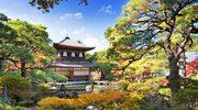 Podróż do Kioto. Co tam zobaczyć?