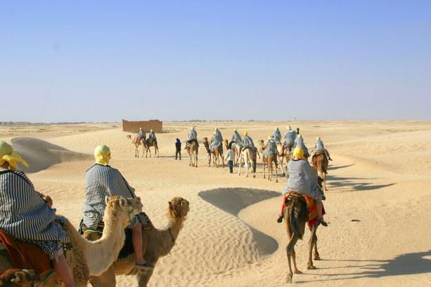 Podróż na wielbłądach może okazać się przygodą życia /123/RF PICSEL