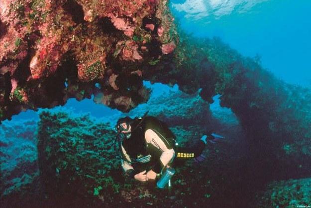 Podwodna grota Amphora tętni życiem. W jaskini można odnaleźć antyczne amfory i stare kotwice.