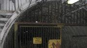 Podziemne wstrząsy w kopalni Marcel w Radlinie