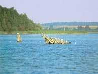 Pojezierze Mazurskie, jezioro Luterskie na Pojezierzu Olsztyńskim /Encyklopedia Internautica