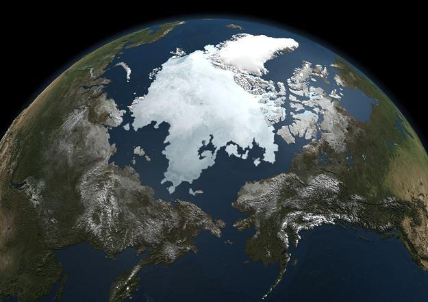 Pokrywa lodowa na Arktyce - zdjęcie NASA /AFP