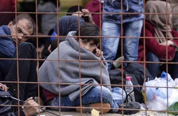 Polacy obawiają się imigrantów na rynku pracy /PAP/EPA