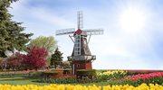 Polacy trudniej rozliczą pracę w Holandii