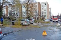 Połamane drzewa, uszkodzone samochody. Krajobraz po wichurze w Tychach