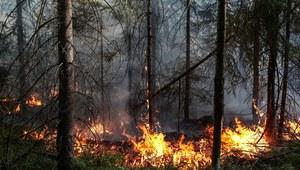 Polanów: Pożar lasu. Akcję strażaków utrudnia pogoda