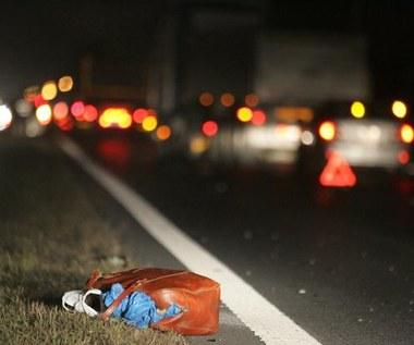 Policja już wie, jak zmniejszyć liczbę ofiar wypadków