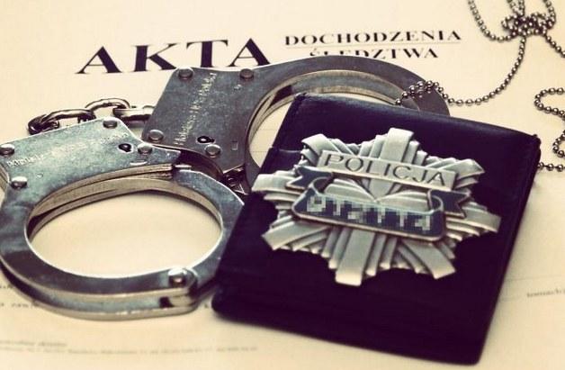 Policja otrzymała zgłoszenie o maltretowaniu psów /Policja