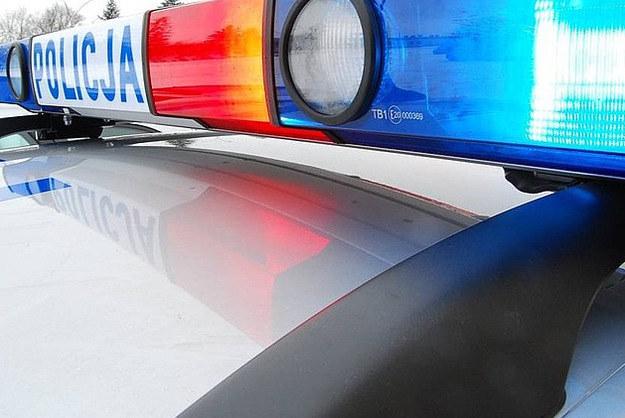 Policja szuka rodziców noworodka porzuconego w Ostrowie Świętokrzyskim /Policja