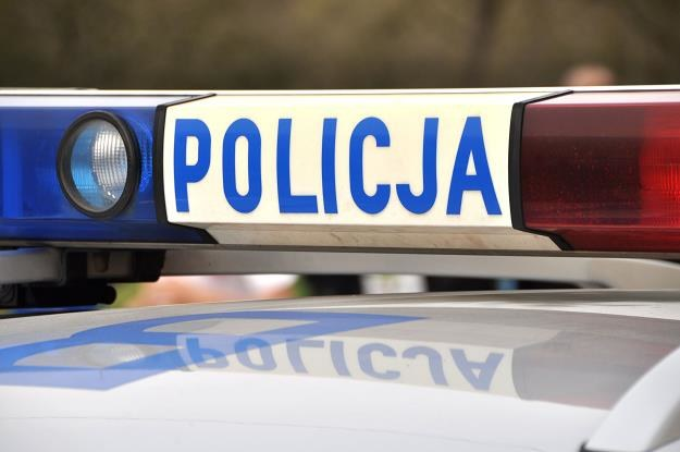 Policja (zdj. ilustracyjne) /123RF/PICSEL
