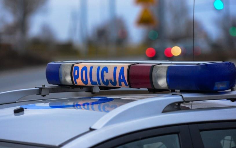 Policjanci szybko zorientowali się, że nastolatek sfingował porwanie /Paweł Skraba /East News