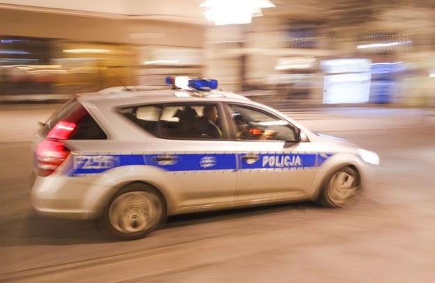 Policyjny radiowóz; zdj. ilustracyjne /Piotr Kamionka /Reporter