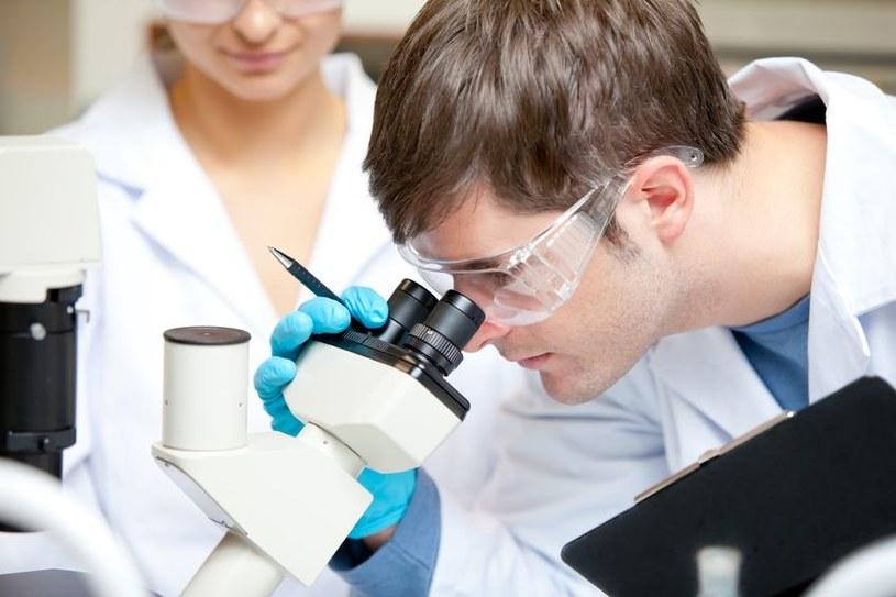Polscy naukowcy wśród najlepszych na świecie. Jak ich zatrzymać w naszym kraju? /©123RF/PICSEL