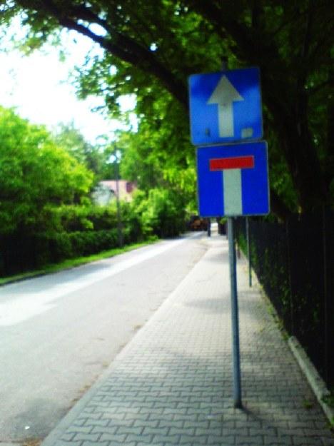 Polska droga do głupoty