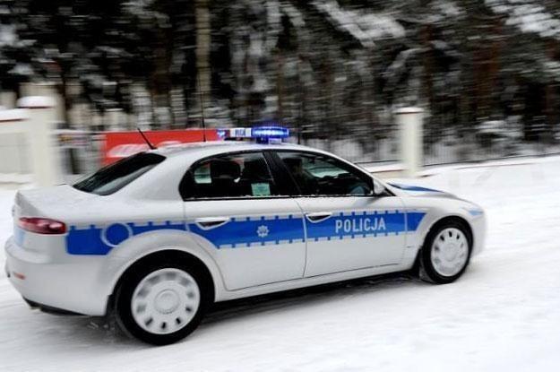 Polska policja ma jedyne na świecie alfy romeo 159 ze stalowymi felgami /Policja