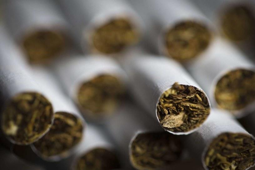 """""""Polska wciąż znajduje się w czołówce krajów Europy, jeśli chodzi o zachorowalność i umieralność na raka płuca"""" /AFP"""