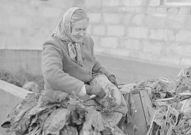 Polska wieś w latach 70. zeszłego stulecia /Z archiwum Narodowego Archiwum Cyfrowego