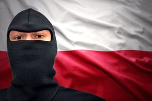 Polska wśród państw najbardziej zagrożonych wirusami